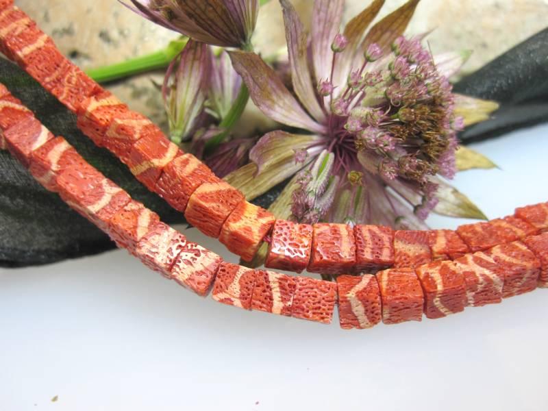 koralle-natuerlich