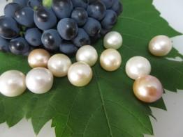 Perlen natürlich/ ganz rund / Naturfarbe 14mm !!
