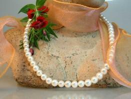 Perlencollier - Perlenstrang mit weißen Süsswasserperlen 7mm