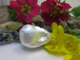 Barocke Perle ungebohrt, bizarre Formen, weiß Modell 6