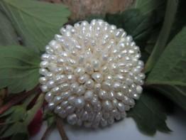 Brosche Perlen, 40mm Brosche mit vielen Süßwasserzuchtperlen
