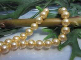 Muschelkern golden, feiner Strang mit 8mm Durchmesser