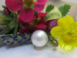 Südseeperle ungebohrt 13,2mm Farbe weiß Mod.53