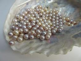 Süßwasserperle klein, ungebohrte AAA-Grade Perle 7,5-8mm