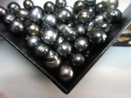 Tahitiperlen klein ohne Bohrung - 8 bis 9mm 9,90 Euro