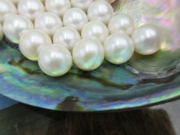 Weiße Süßwasserperle, ungebohrt mit Top Lüster 13-13,5mm